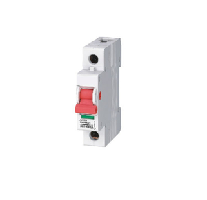 Isolation Switch 100A 4p (Ekd1-100)